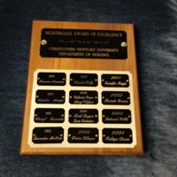 3.32 A Nightingale Award of Excellence